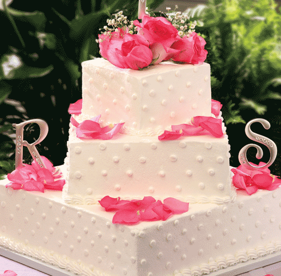 Square polka dots with Pink Roses