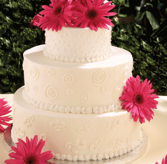 White Buttercream designs  w/ Gerbera Daisies
